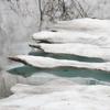 ◆'20/05/16    残雪と新緑の県立自然博物園へ③