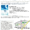 参加者募集。 YA小説の読書会「横浜緑YAカフェ」10月7日(日)9時45分~ テーマの本『ある晴れた夏の朝』小手鞠るい著