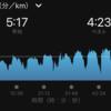 ほんのちょっとだけ「スピード」を意識した7月ランの記録
