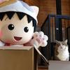 公式YouTubeチャンネル「ちびまる子ちゃんねる」開設!