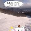 【岐阜県 スキー場】高鷲スノーパーク&ダイナランドゲレンデレポ★2020年1月21日【スノーボード】