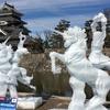 《国宝松本城 氷彫フェステバル》24時間で4回訪問してのイベントレポート☆