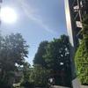 朝の新宿を散歩♪♪