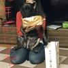 (昨日は)甲斐犬サンの犬の日の巻〜わんワン ONLY ONEダョU^ェ^U