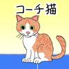 奈良に新しくオープンするイシダ卓球場へGO!