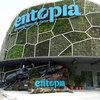 ペナン島ツアー その3 バタフライファーム「entopia」 蛙(カエル)や蜥蜴(トカゲ)