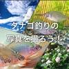 タナゴ釣りの写真を撮ろう!楽しみ倍増!私の撮った写真も紹介!