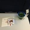 ユナイテッド航空 UA881 シカゴ-成田