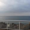 江ノ島の赤潮の状況について