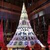 都内の街歩きで楽しむクリスマス&イルミネーション