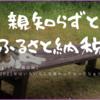 【備忘録】親知らずとふるさと納税(10月)
