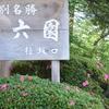 金沢城公園のヒメスイレン・・