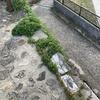 石混じりの舗装