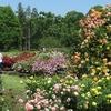 2020.05.30 植物公園再び