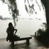 杭州 西湖の湿地。12世紀時点での世界最大都市の巨大市民公園。