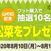 【太陽光パネルの下で採れた小松菜プレゼント】残暑お見舞申し上げます。