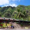 大自然でパワーチャージ!!映画ロケ地 をまわるツアー【 クアロアランチ へ行く 】JAL ビジネスクラスで行く ハワイ で挙式