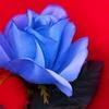 ツイン・ピークス The Return 考察 第9章 PART.1 青いバラ再び!青ざめるMr.トッド!フスコ三兄弟は青臭いニヤケ顔が止まらないっ!