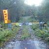 2020-10-18  リビラ山 ヌモトル林道~樺司山~リビラ山