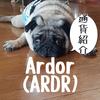 Ardor (ARDR) アーダー