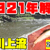 【鮎釣り#1・2】宮川上流で鮎釣り
