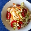 簡単!振って作る「キャベツとパプリカと人参サラダ」作り方・レシピ。