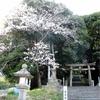 楠木谷川と春日神社