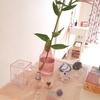 サロンの美しいものたち - うすピンクオーラの復活