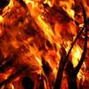 【ヒューマンデザイン】獅子座新月:炎上商法が自滅する