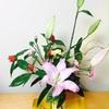 明けましておめでとうございます( ´ ▽ ` )ノ+大晦日とお正月の記録