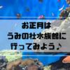 【元旦から営業】お正月はうみの杜水族館に行ってみよう♪