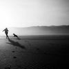 【おじいさんと犬】=雨の日も風の日もゴミを拾い続ける一人と一匹の物語。