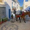 スペイン 白い村「フリヒリアナ」の歩き方と写真スポット