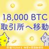 ビットコイン回復直前、取引所BitMEXのウォレットに18,000BTCが移動されていた