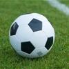 サッカーは日本代表だけじゃない!?私の米国株銘柄代表メンバーを紹介する