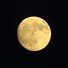 中秋の名月を観ながらシーバス釣りをしてきた