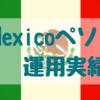 【メキシコペソ】'19年10月運用実績 +7,169円でした(累計利益2万円越え)
