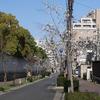 「神戸・海のモン、山のモン」と言ってもご近所ネタですが。