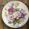 昭和30年代の古い絵皿 ハンドペイント