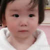 妊娠確率5%から授かった、トリリンガルをめざす娘の成長記録~1歳6か月~
