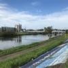 """ビルドアップ走(5'00""""/km→4'05""""/km)15km"""