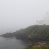 納沙布岬霧にむせぶ