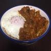 ベジタブルカレーとバスマティライス<毎食たんぱく質を必ず摂る!>
