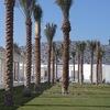 ルーブルアブダビ(Louvre Abu Dhabi )は空港からバスで行ける
