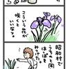 ナゾの植物