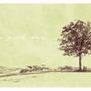 ケヤキの木 のイラスト