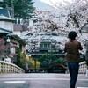 箱根の春③