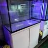 W90cmオーバーフロー水槽[ペットバルーン・大阪府・中古引き取り(回収)・中古買取・水槽】