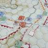 「Alesia: Last Stand of the Gauls」(S&T誌)を対戦する(3/3)