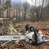 ただいま伐木作業中、原木切りは自給自足の一助になるか?